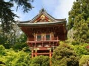 "Free Admission Hour ""Japanese Tea Garden"" at GG Park"
