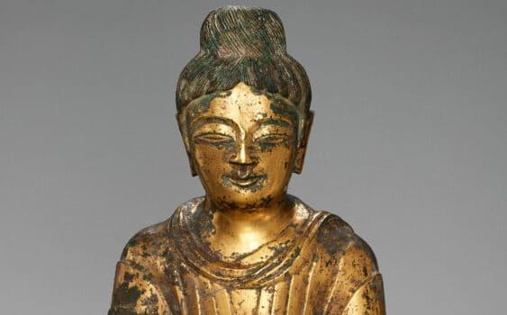 Buddha 338 hero 1 scaled 1 1920x1195 1 563x350