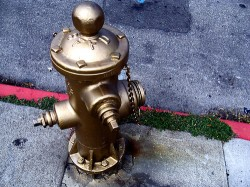 Golden Fire Hydrant Painting Ceremony | Dolores Park