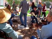 2019 Berkeley Old Time Music Convention | Jamming in the Park