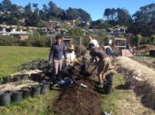 Eco SF School Farm Volunteer Work Day | SF