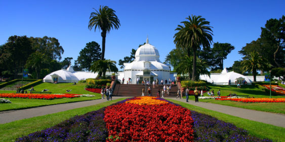 Conservatory of flowers san francisco 1280x6401 563x282