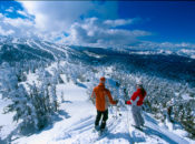 "2019 ""Snowbomb"" Ski & Snowboard Festival & Beer Tasting | Sacramento"