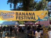 2019 Banana Festival: Marketplace, Exhibit & Food Truck | Sacramento