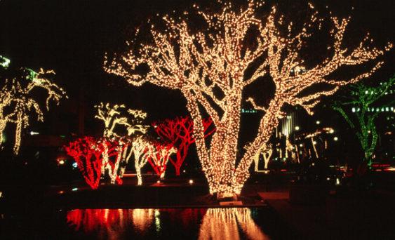 2017 Winter Blast: Holiday Tree Lighting, Live Music