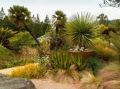 Free First Wednesday | UC Berkeley Botanical Garden