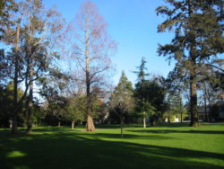 1280px-Burlingame_washington_park2