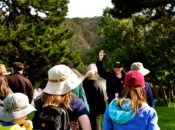 Free Guided Trail & Nature Walk | Golden Gate Park