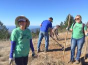 11th Annual REI Ridge Trail Service Day | Bay Area