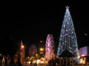 2017 Christmas in the Park Opening: 60-Foot Tree Lighting & Live Music | San Jose