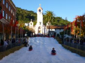 Free Snow Sledding Day | San Rafael