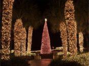 2018 Ritz Carlton Tree Lighting Ceremony | SF