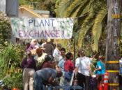 Spring 2019 Free Plant Exchange | Oakland