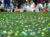 Eggster's 25th Annual Egg Hunt & Learning Festival | UC Berkeley