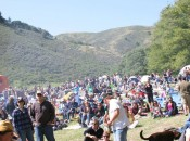47th Annual Muir Beach Firemen's BBQ | Mt. Tam