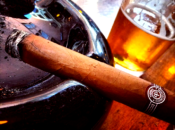 Free Live Jazz & Latin Jazz Nights |  Cigar Bar