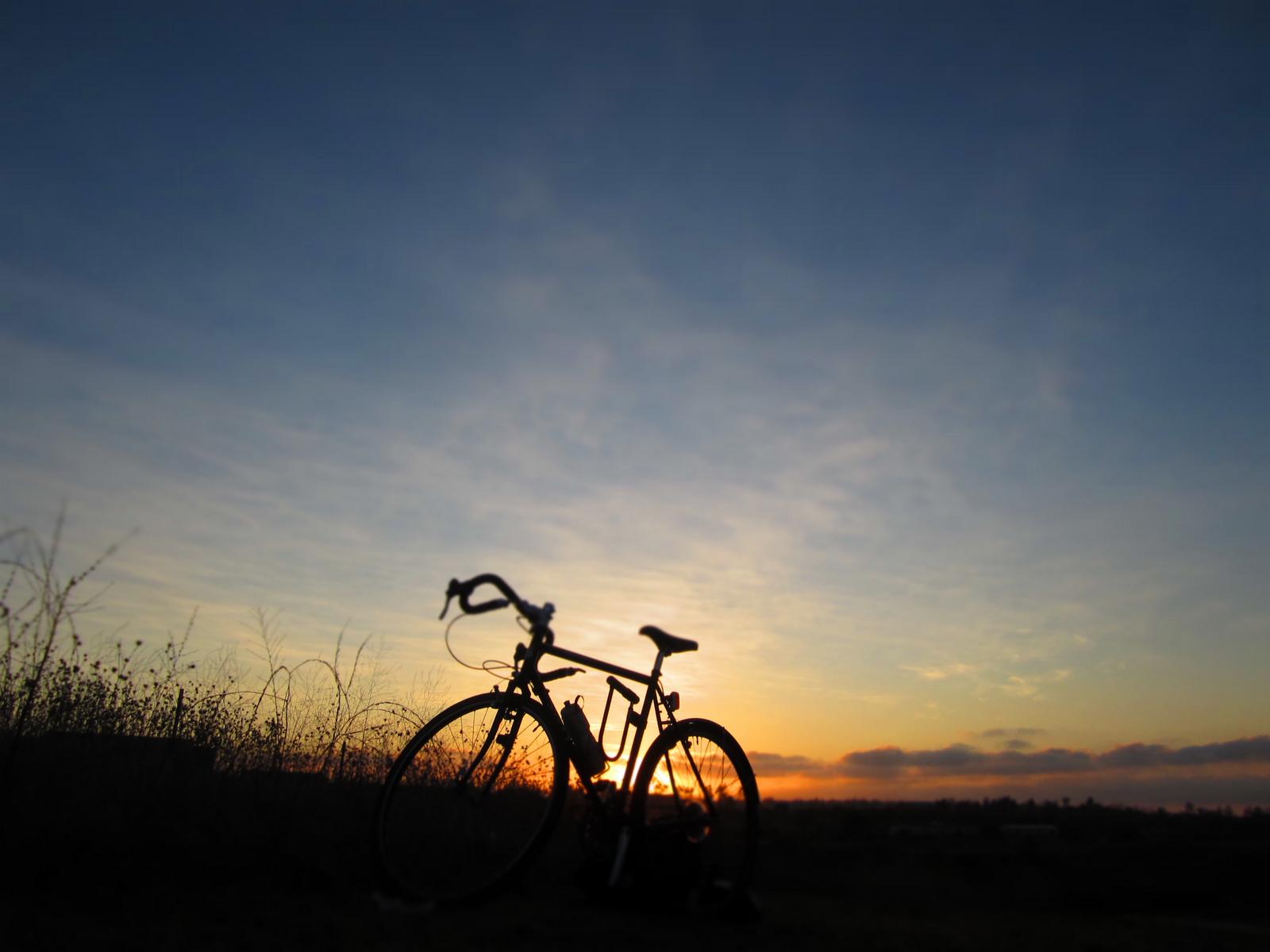 bike to work day happy hour  free beer  u0026 snacks