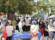 22nd Annual Progressive Festival | Petaluma