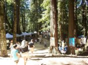 2018 Kings Mountain Art Fair in the Redwoods: Labor Day | Peninsula