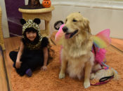 ARF's Howl-O-Ween Party: Cute Pets, Witchy Crafts & Ghoulish Games | East Bay