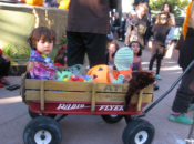 Halloween Fest: Free Scary Hairstyling, Trick or Treating & Live Music | Berkeley