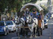 24 Holidays on 24th Street: Holiday Hay Rides | Noe Valley
