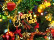 Slim's 3rd Annual Holiday Bazaar & Craft Fair | SF