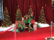 Children Craft Workshop & Free Photos with Santa Claus | Japantown