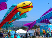 2019 Berkeley Kite Festival & Championships | July 27-28