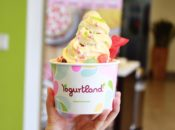 National Frozen Yogurt Day: Buy One, Get One Free Froyo Day | Yogurtland