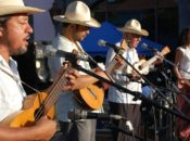 7th Annual San Francisco Son Jarocho Festival | Brava Theater