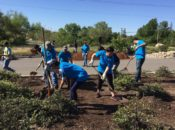 21st Annual Earth Day Volunteering Day | SF