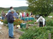 """""""Growing Hope"""" Earth Day Celebration & Free Lunch 