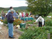 Earth Day Celebration at the Farm: Live Music, Egg Hunt & Workshops | Albany