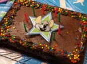 Free Cake at Chuck E. Cheese's Biggest Birthday Ever | San Bruno