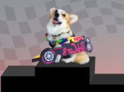 2nd Annual Fido 500 Dog Race: Car Costume & Design Competition | SF