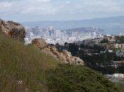 Mt. Davidson Hike: Rare Walking Tour | SF City Guides