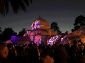 Phototaxis: Free Friday Night at Conservatory of Flowers | Golden Gate Park