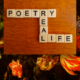 100 Thousand Poets For Change Poetry Readings   SF