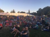 10th Annual Blues & Brews Festival | Pleasant Hill