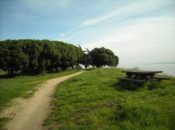 Poetry in Parks 2017: Quiet Lightning at Candlestick Point | SF