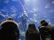 Spotlight NightLife | California Academy of Sciences