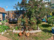 Portola Garden Tour: See SF's Hidden Gardens | 2017