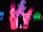 "7th Annual ""Autumn Lights"" Festival | Lake Merritt"