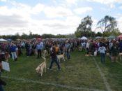 2018 Dogtoberfest: Free Dog Bandana, Pet Costume Contest & Beer Garden | Livermore