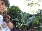 Harvest Festival: Free Food, Workshops, & Music | Albany