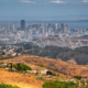 Free Guided Hike of San Bruno Mountain | Brisbane