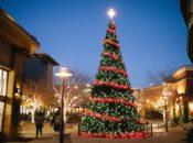 Free Photos & Holiday Tree Lighting W/ Santa | Alameda