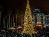 2019 Jack London Square Tree Lighting Ceremony | Oakland