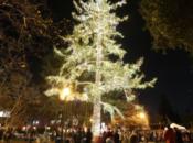 Holiday Tree Lighting & Storytelling w/ Santa | Menlo Park